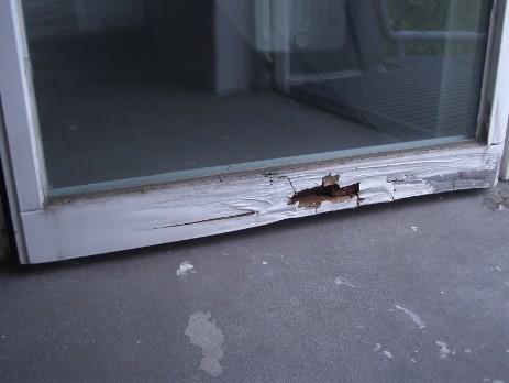 Sch den windowcare der holzdoktor fenster und for Fenster care